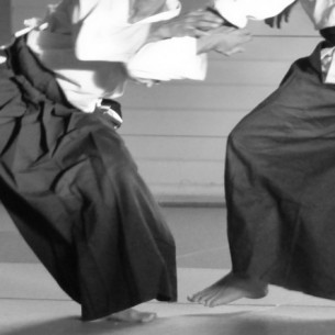 aikido-carcassonne 2