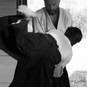aikido-carcassonne 3